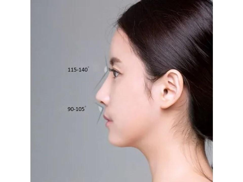 鼻整形臉部比例-2